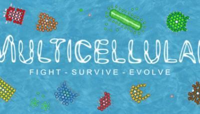 Multicellular