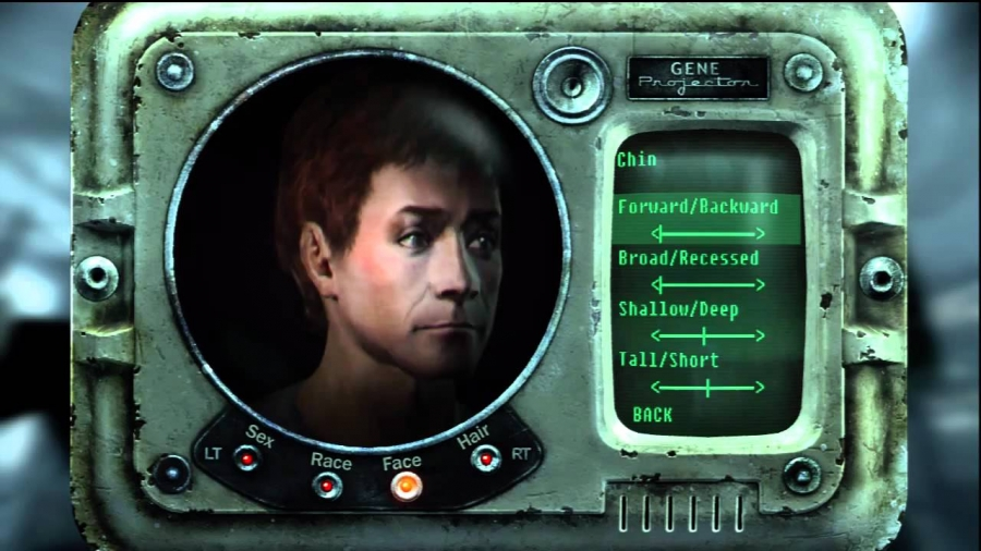 Fallout 3: Character Builds