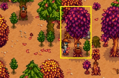 How to get Oak Resin in Stardew Valley?